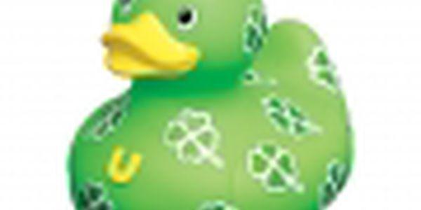 Osobní kačenka Čtyřlístek (mini) s motivy bílozelených čtyřlístků