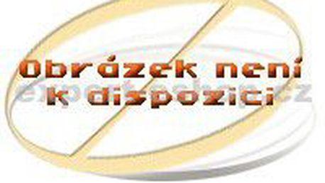 Podlahový vysavač Zanussi ZAN 3310, 1600 W, plynulá regulace výkonu