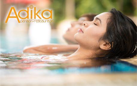 Len 39,99 € za 3-dňový pobyt v Nízkych Tatrách v penzióne ADIKA***! V cene polpenzia, sauna, vírivka a fitness! BONUS: 1+1 vstupenka do AQUA SLOVAKIA 2012/2013 za extra cenu!