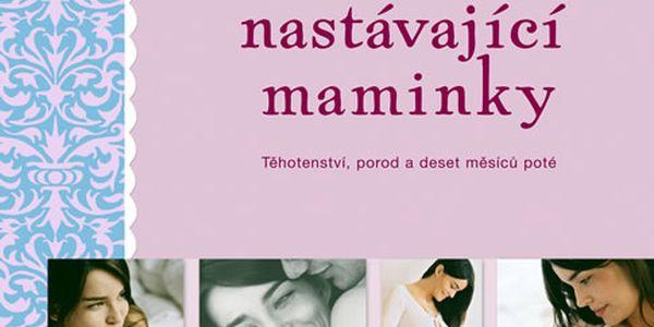 Kniha Deník nastávající maminky - Těhotenství, porod a deset měsíců poté
