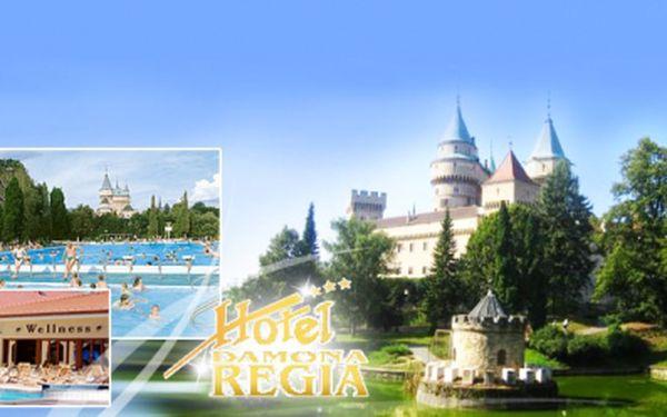 TRI DNI v zámockom Hoteli Damona Regia ***! Ubytovanie pre DVE osoby s polpenziou za skvelých 75 Eur! Navyše ďalšie zľavy na WELLNESS - vírivka, sauna, masáž. Termálne kúpele Bojnice len 200m od hotela! Zľava 56%!