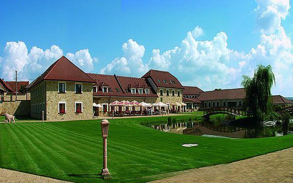 Pětidenní pobyt s plnou penzí a all-inclusive vstupem do wellness v hotelu Lions***.