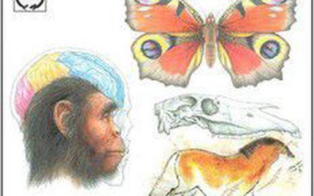 Jan Jelínek; Vladimír Zicháček: Biologie pro gymnázia