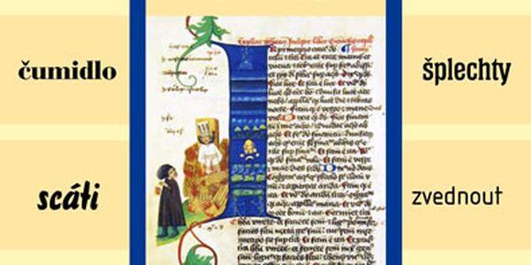 Kniha Chrám i tvrz - Kniha o češtině