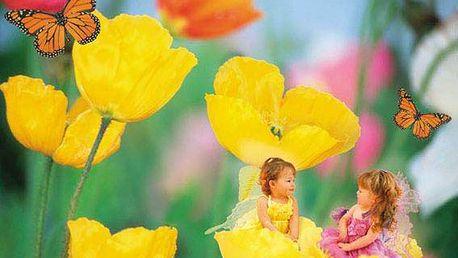 Puzzle CLEMENTONI 1000 dílků - Kamarádky v makovém květu