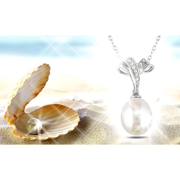 Nádherná perla přání s řetízkem a přívěskem uschovaná v útrobách lastury