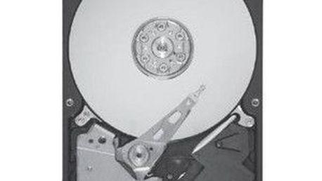"""Interní 3,5"""" pevný disk Seagate Barracuda7200.12 1000GB"""