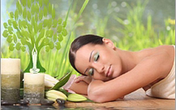 Bylinná detoxikační masáž