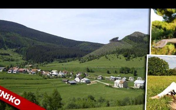 Pohodové WELLNESS pro dva v Nízkých Tatrách! Rezervujte pobyt v penzionu Čucoriedka a užijte si zdravého vzduchu pod Královou Holou od 1.389 Kč, na 4 nebo 3 dny pro 2 osoby.