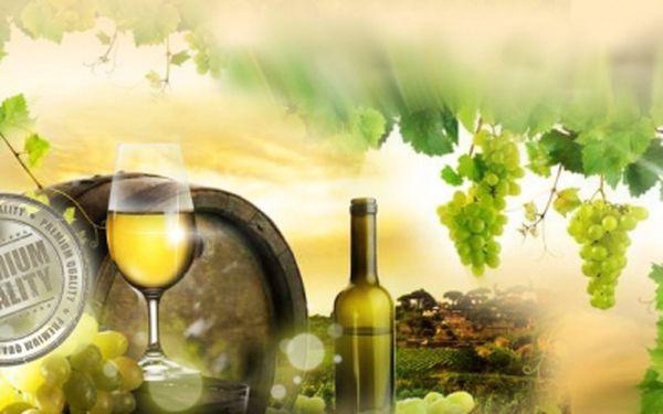 Exkluzivní VÍNO GRÜNER VELTLINER SMARAGD 2009 s archivačním potenciálem jen za 248 Kč! Kvalitní syté víno, žluté barvy a lahodné chuti oceněné stříbrnou medailí AWC Vienna 2009! Vychutnejte si výtečnou slevu 31%!