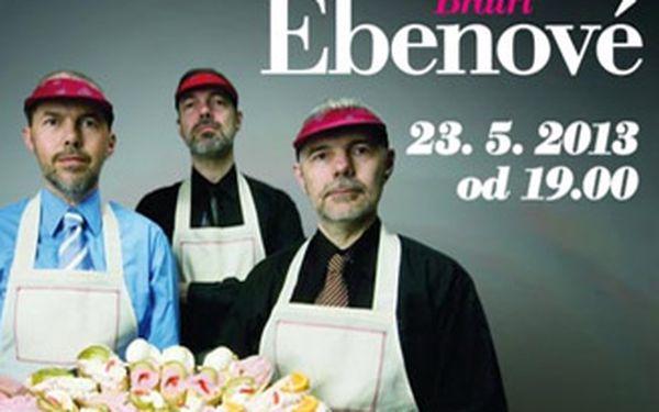 Koncert pozoruhodné skupiny Bratři Ebenové s kapelou v brněnském parku Lužánky.