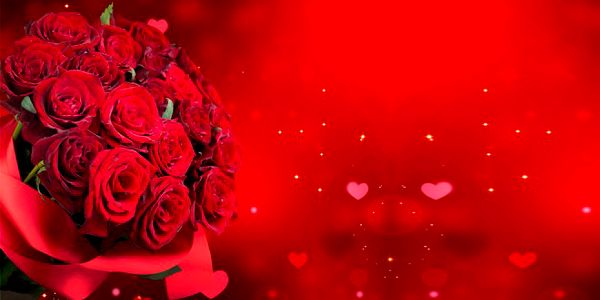 Puget 9 rudých růží s 60% slevou