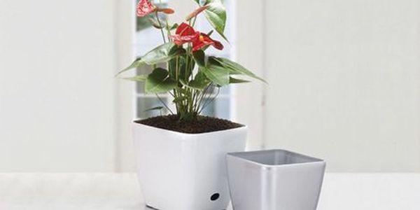 Malý hranatý kvetináč