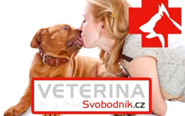 VETERINÁRNÍ PÉČE pro vašeho zvířecího miláčka - balíčky dle výběru! Čipování, pet-pas, vyšetření krve, ošetření drápků - dopřejte svému zvířátku péči!