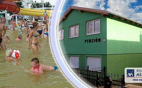 Týdenní pobyt v penzionu ALFA v Podhájské na Slovensku. Udělejte radost svému zdraví dovolenou v obci Podhájska na Slovensku, jejichž dominantou jsou termální koupaliště.