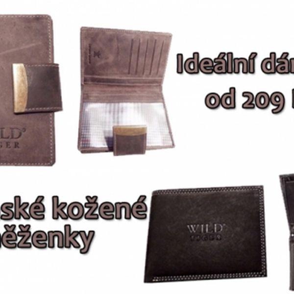 Pánské kožené PENĚŽENKY! Kvalitní kůže a moderní design nové kolekce 2013 od 190 Kč!