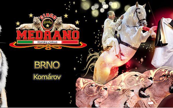 Vstupenka na Italský cirkus Medrano v sobotu 20.4.2013