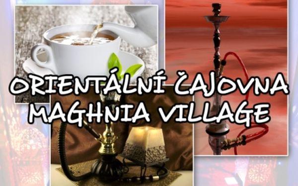 Luxusní VODNÍ DÝMKY a nápoje dle vašeho výběru v jedné z nejlepších čajoven! Maghnia Village na Janáčkově nábřeží! Sleva na celé menu! Poznejte tajemství Orientu!!!