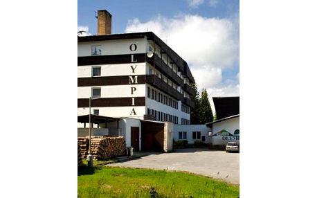 Dovolená na ŠUMAVĚ pro 2 osoby sbohatou polopenzí & volným vstupem do fitness – Sport hotel Olympia!
