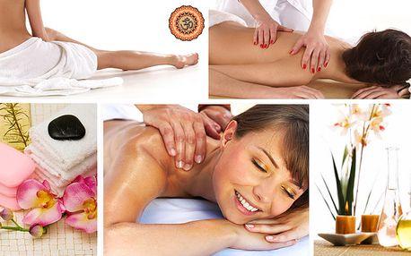 Hodinová masáž zad a šíje dle vlastního výběru