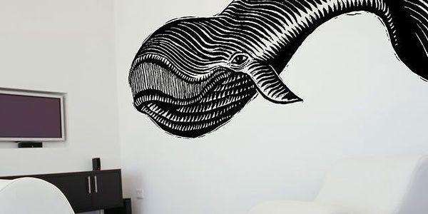 Samolepka Whale, 263x110 cm. Obrovská velryba je váš nový spolubydlící!
