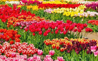 Zájezd do Rakouska na mezinárodní květinový veletrh!