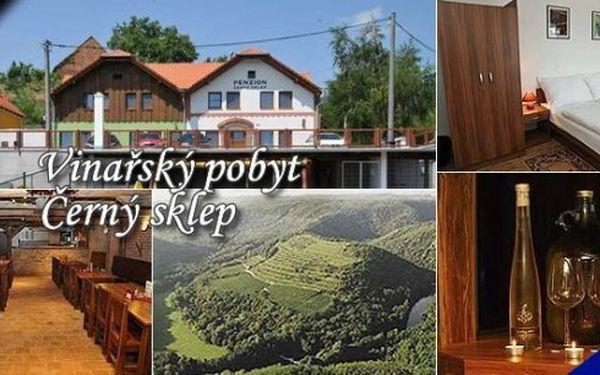 Vinařský pobyt pro 2 s ochutnávkou vín ze Znojemské vinařské podoblasti na předměstí historického města Znojma. V okolí je spoustu cyklostezek, DINOPARK, Dětský svět Hatě a mnoho dalšího !