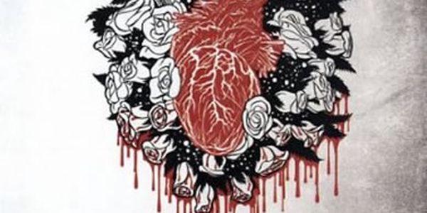 Kniha Kruh 2 - Oheň - Mrazivý a nelítostný příběh ze Švédska.