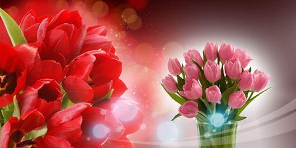 Kytice 19 krásných červených nebo růžových čerstvých TULIPÁNŮ za 299 Kč! Osobní odběr nebo rozvoz po Praze 4 ZDARMA! Skvělý tip na dárek ke DNI MATEK – 12. května!