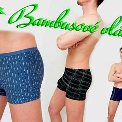 Pánské prádlo z BIO bambusového vlákna!