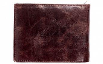 Pánska hnedá peňaženka Bagatt