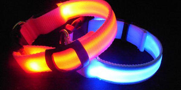 Svietiace LED obojky pre psy len za 4.60 eur