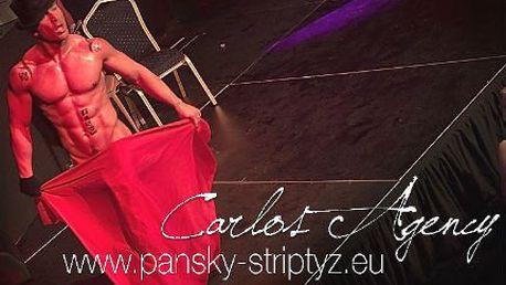 Nejlepší striptéři planety v Ostravě a Praze 15.-16.6.2013
