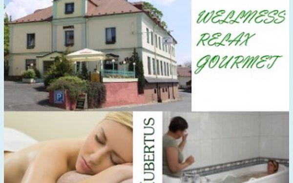 Wellness & Relax & Gourmet pro 2 os / 2 noci v Hotel Hubertus v Lázních Kynžvart