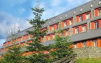 Fantastických 4990 Kč za prázdninový pobyt pro 1 - 4 osoby na 8 dnů (7 nocí) v horském apartmánu Ramzová v Jeseníkách!