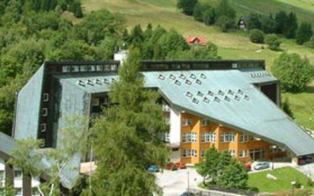 WELLNESS POBYT V KRKONOŠÍCH! 4denní ubytování s polopenzí pro 1 v ***hotelu Fit Fun v Harrachově