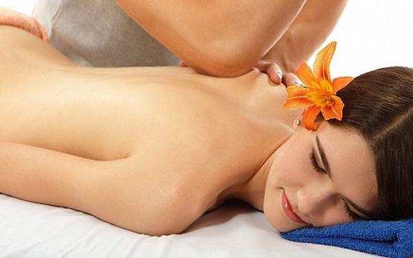 Havajská masáž Lomi Lomi celého těla v délce 60 minut