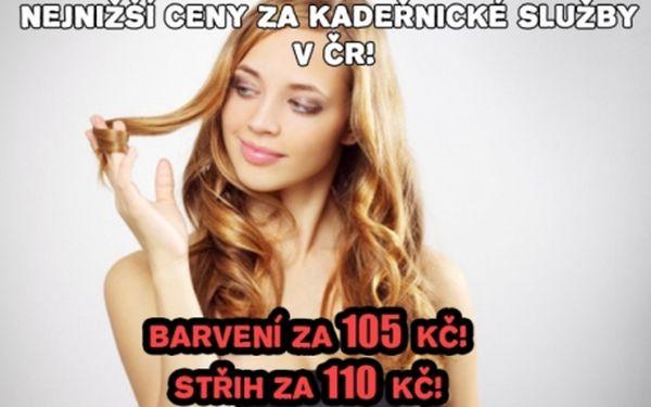 Profesionální kadeřnictví SEKANINOVÁ!! Barvení nebo melírování za 105 Kč, střih za 111 Kč pro veškeré délky vlasů..