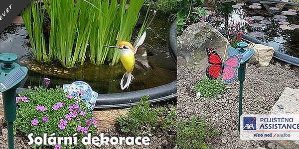 Solární motýl nebo kolibřík - ozdobte si své zahrady, truhlíky i květináče za okny solárním motýlem či kolibříkem, který dokáže věrně napodobit opravdový let a tak zkrášlit každý Váš rozkvetlý kout