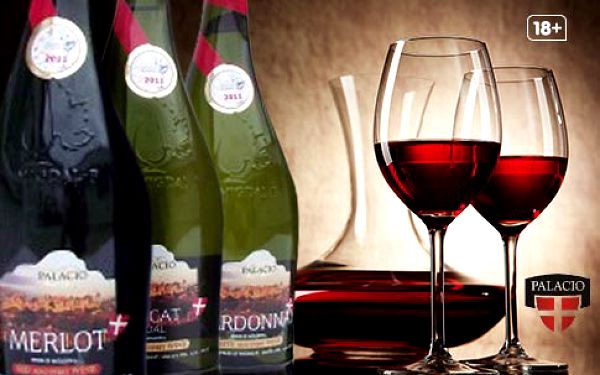 Vína z oblasti Codru – 12 designových lahví