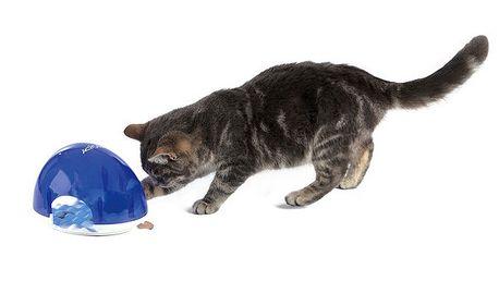 Kočicí box na pamlsky