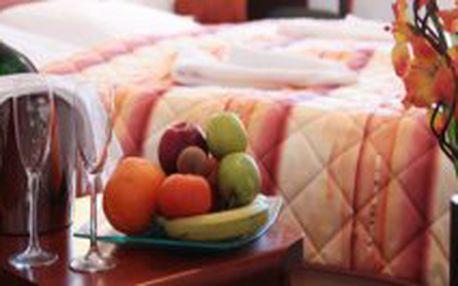 Romantický wellness pobyt na 3dny pro DVA s procedurami a polopenzí