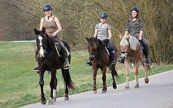 Romantická vyjížďka na koních za 599 Kč! Pro 4 osoby!