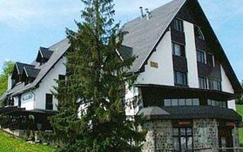 Ubytování v Belianských Tatrách! Třídenní, čtyřdenní nebo šestidenní pobyt s polopenzí pro dva v penzionu JÁNOŠÍK na Slovensku