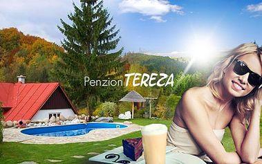 Úžasný relax na 3 nebo 6 DNÍ PRO DVA se snídaní, kafíčkem a zákuskem v Rokytnici nad Jizerou od 999 Kč! Penzion Tereza s bazénem, ubytováním a restaurací v domácím, příjemném stylu! Odpočinek na horách až do ŘÍJNA! Sleva až 42%!