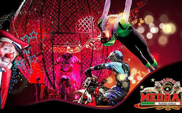 Vstupenka na Italský cirkus Medrano v Plzni v úterý 13.8.2013