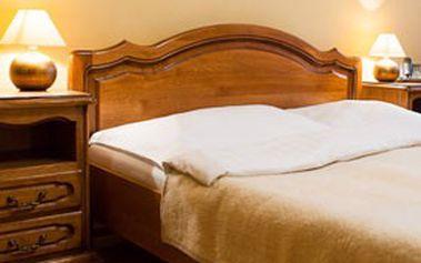 RELAXAČNÍ POBYT v Piešťanech na Slovensku s ubytováním, polopenzí a wellness pro dva v hotelu Satelit ***
