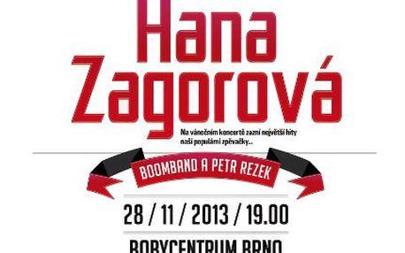 Vstupenka na koncert Hanky Zagorové v Brně se slevou 40 %