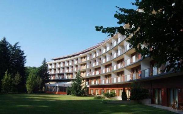 Wellness Hotel Fagus 4**** Maďarsko , na 4 dny pro dva s polopenzí SUPER LAST MINUTE
