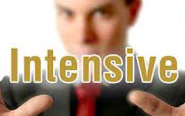 Intenzivní individuální kurz angličtiny - srpen-září 2013 -jen Vy a Lektor